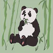 Cute panda eat bamboo. Drawn in cartoon style