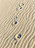 Background Of Sand Ripples At The Beach With Footsteps