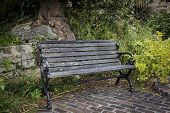 Grungy old park bench sitting in a secluded spot.
