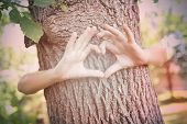 Child's hands making a heart shape on a tree trunk. Instagram effect