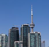 Cn Tower And Condos