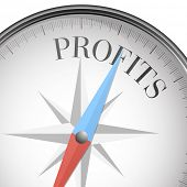 detailed illustration of a compass with profits text, eps10 vector
