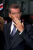 LOS ANGELES - AUG 13:  Pierce Brosnan at