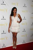 LOS ANGELES - AUG 12:  Mishael Morgan at the Dynamic & Diverse:  A 66th Emmy Awards Celebration of D