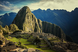 pic of lamas  - Machu Picchu at sunset when the sunlight makes everything golden - JPG