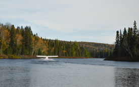 pic of float-plane  - White float plane about ready to take off from a lake in the woods - JPG