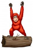 foto of orangutan  - Illustration of an orangutan on a log - JPG