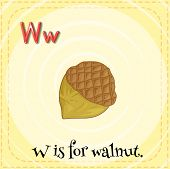 A letter W which stands for walnut