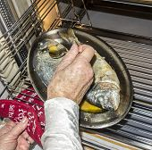 woman prepares fish in oven at home kitchen