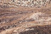 Dark Sand Surface After The Rain