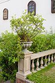 Ceramic Flowerpots On Banister