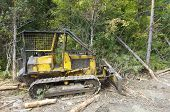stock photo of bulldozer  - view of little bulldozer in a forest