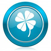 four-leaf clover blue icon