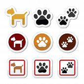 pic of paws  - Vector icons set of dog and paws isolated on white - JPG