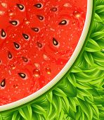 Optical watermelon background pattern. Vector illustration.