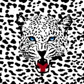 leopard vector pattern