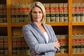 image of lawyer  - Lawyer looking at camera in law library at the university - JPG