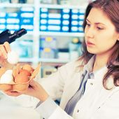 girl in the laboratory testing of food quality egg. Check the content of protein, fat, cholesterol and pathogens