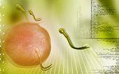 pic of sperm  - Digital illustration of  sperm  in colour  background - JPG