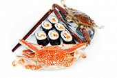 pic of blue crab  - Japanese Cuisine  - JPG