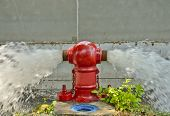 pic of gushing  - Red Fire Hydrant Gushing Water flow for background - JPG