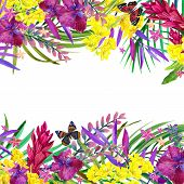 picture of jungle flowers  - Tropical leaves - JPG