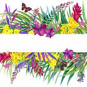 stock photo of jungle flowers  - Tropical leaves - JPG