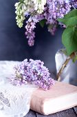 picture of hazy  - Bouquet of purple lilac spring flowers with an open book and vintage hazy editing - JPG