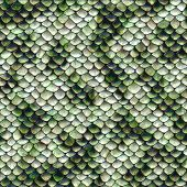 stock photo of jungle snake  - Close up of a snake pattern in shades of green blue and white - JPG