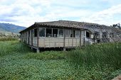 foto of marshes  - A deteriorating wood building on a marsh in a lake in San Pablo - JPG