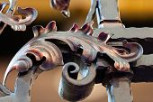foto of wrought iron  - details of structure and ornaments of wrought iron fence and gate - JPG