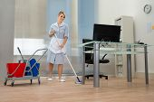 pic of maids  - Young Happy Female Maid Cleaning Floor In Office - JPG