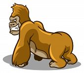 picture of gorilla  - A vector illustration of brown gorilla  - JPG