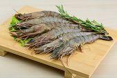 foto of tiger prawn  - Raw tiger shrimps on the wood board - JPG