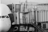 picture of dock  - Jet airplane docked in Airport - JPG