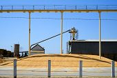 stock photo of animal husbandry  - This Central California plant processes animal feed - JPG