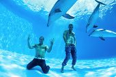 image of friendship belt  - two men and three dolphin fooling around on the bottom of the dolphinarium - JPG