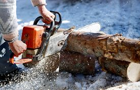 image of man chainsaw  - Man with chainsaw cutting the tree - JPG
