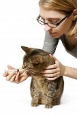 Woman Giving Cat Medication