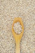 Wooden spoon and dried pearled barley