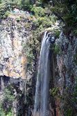 Springbrook cascadas