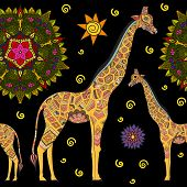 Постер, плакат: Beautiful adult Giraffe Hand drawn Illustration of ornamental giraffe isolated giraffe on dark ba