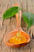 Постер, плакат: Honey Pouring