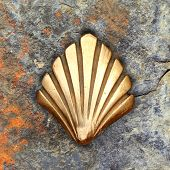 Saint James Way Shell Golden Metal On Streets