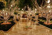Holidays Lights