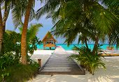 image of kuramathi  - Diving club and cafe on a tropical island  - JPG