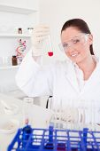 Charming red-haired woman holding a test tube in a lab