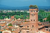 Lucca skyline with Guinigi Tower and cathedral in Italy poster