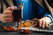 Woman Holding Mug Of Hot Drink (apple Tea, Mulled Wine). Female Hands With Cup Of Seasonal Hot Drink poster