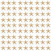 Star Fish Background